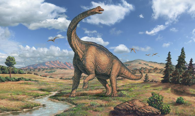 how was brachiosaurus discovered