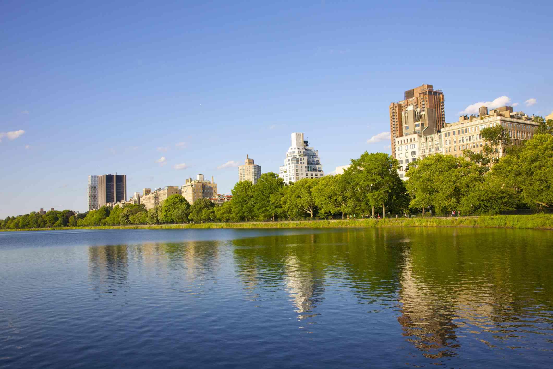 Top Medical Schools in New York