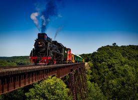 Steam-powered train on a rail bridge cutting through a thick forest under a blue sky.