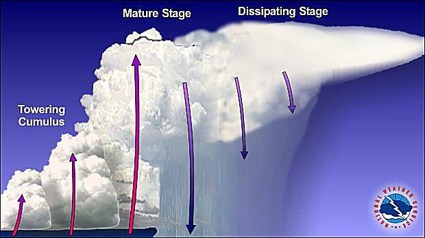 Diagram of a multicell thunderstorm
