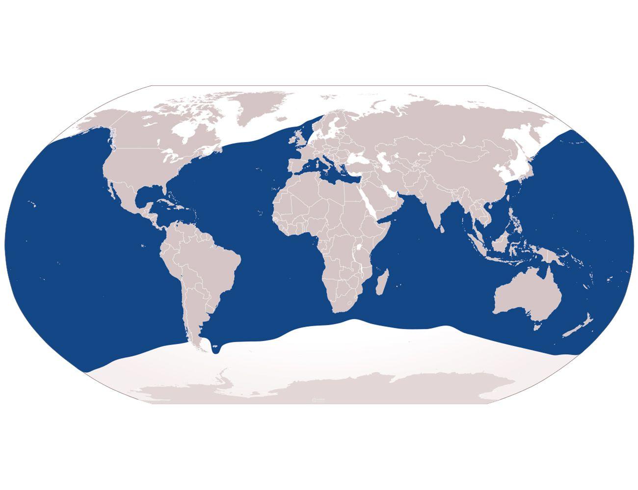 Blue shark range