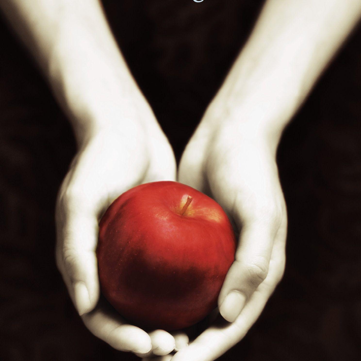 Twilight' by Stephenie Meyer - Book Review