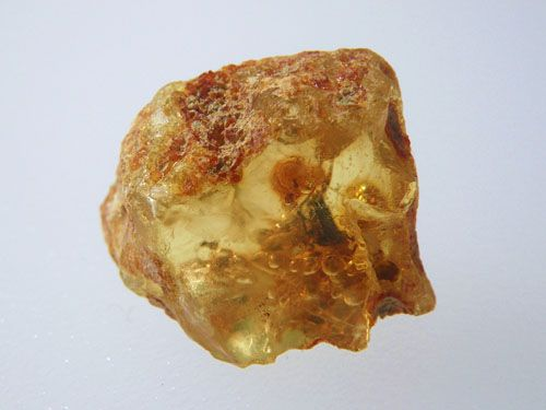 This rough piece of amber contains an insect.