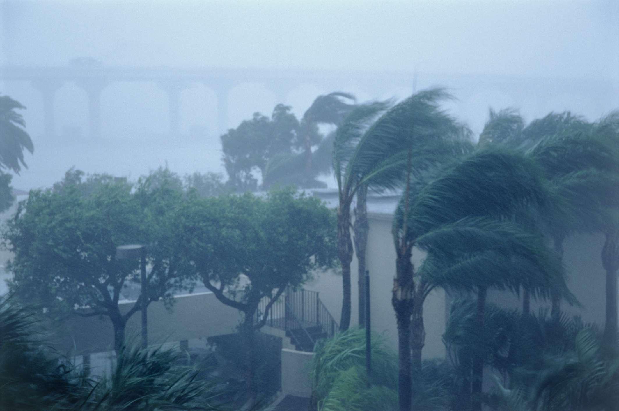Hurricane Irene 1999