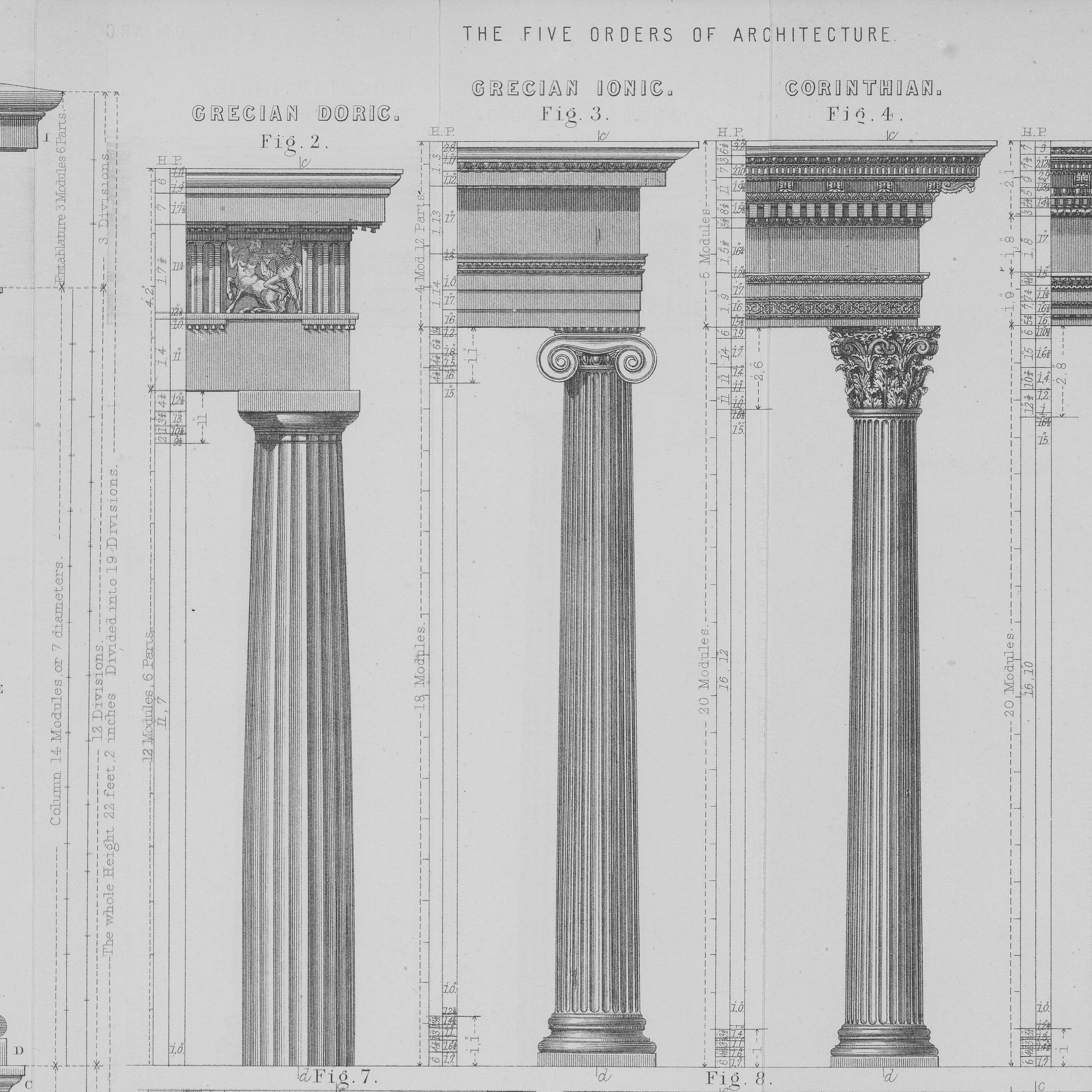 Parts Of A Column >> Types Of Columns And Architecture S Classical Order