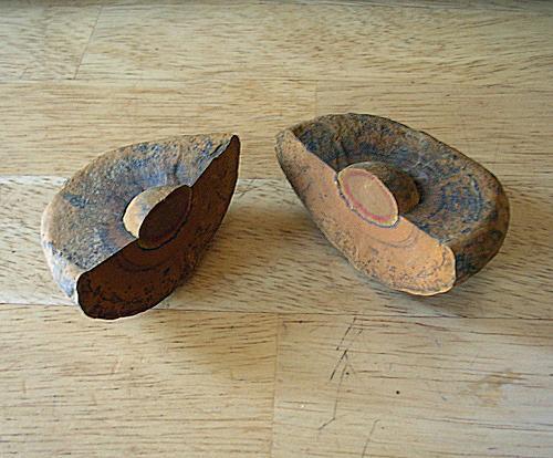 A shaly shroom