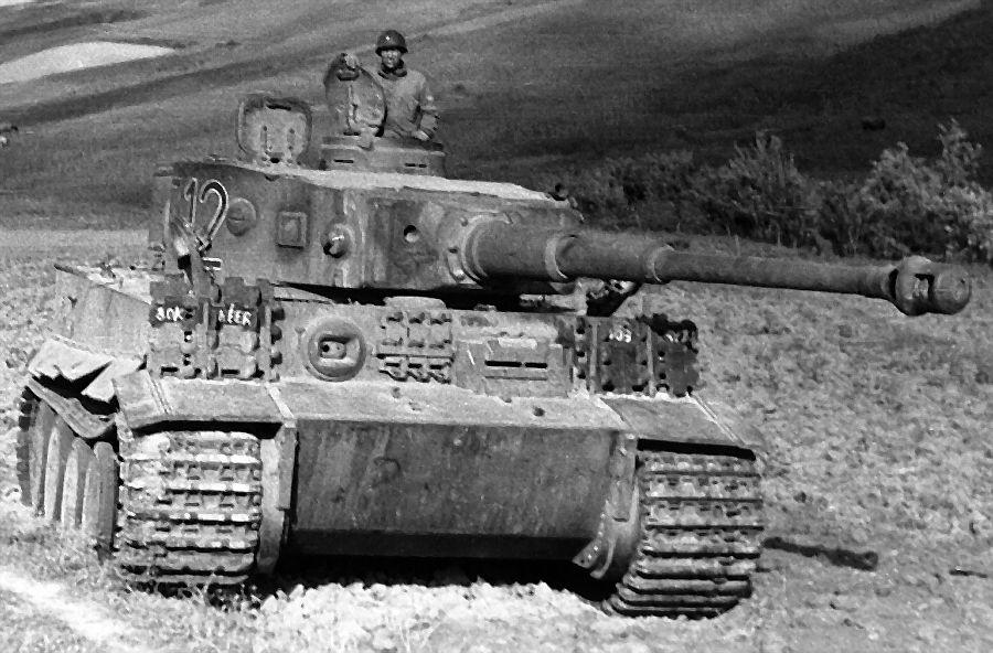 Captured Tiger I