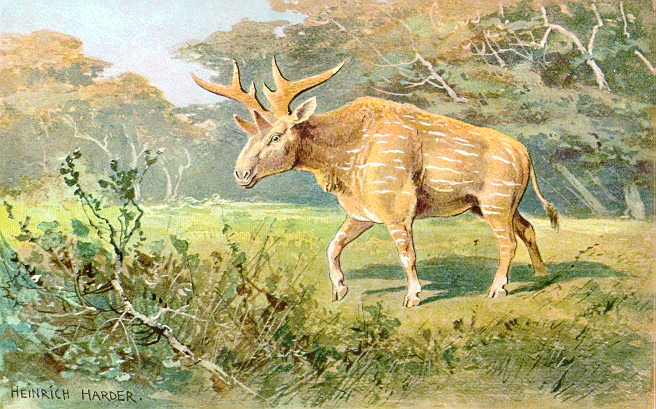 Sivatherium: Facts and Figures