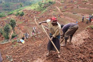 People working fields in Africa.