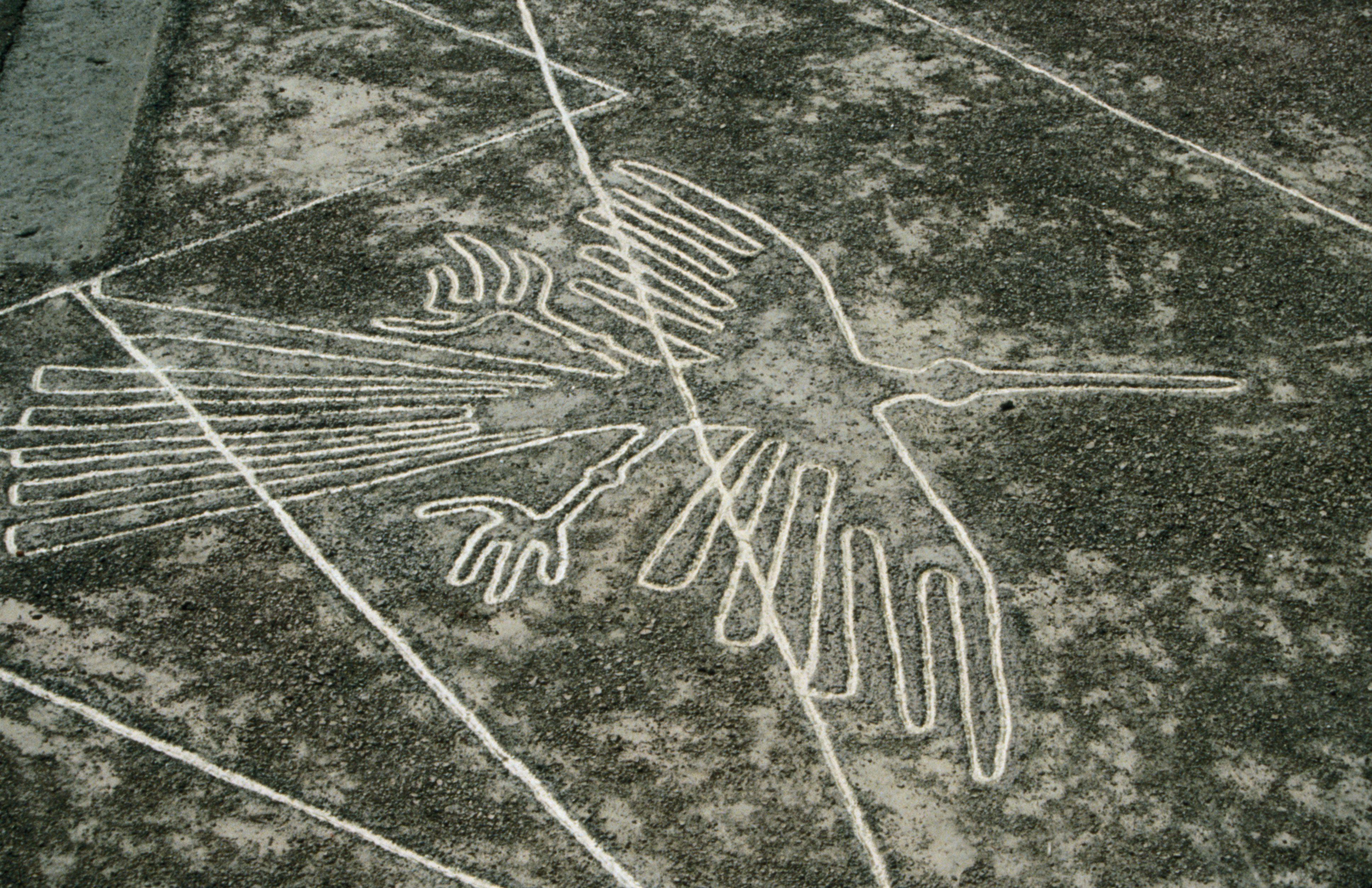 A representation of the Nazca Lines (The Condor) at the Nazca Museum.
