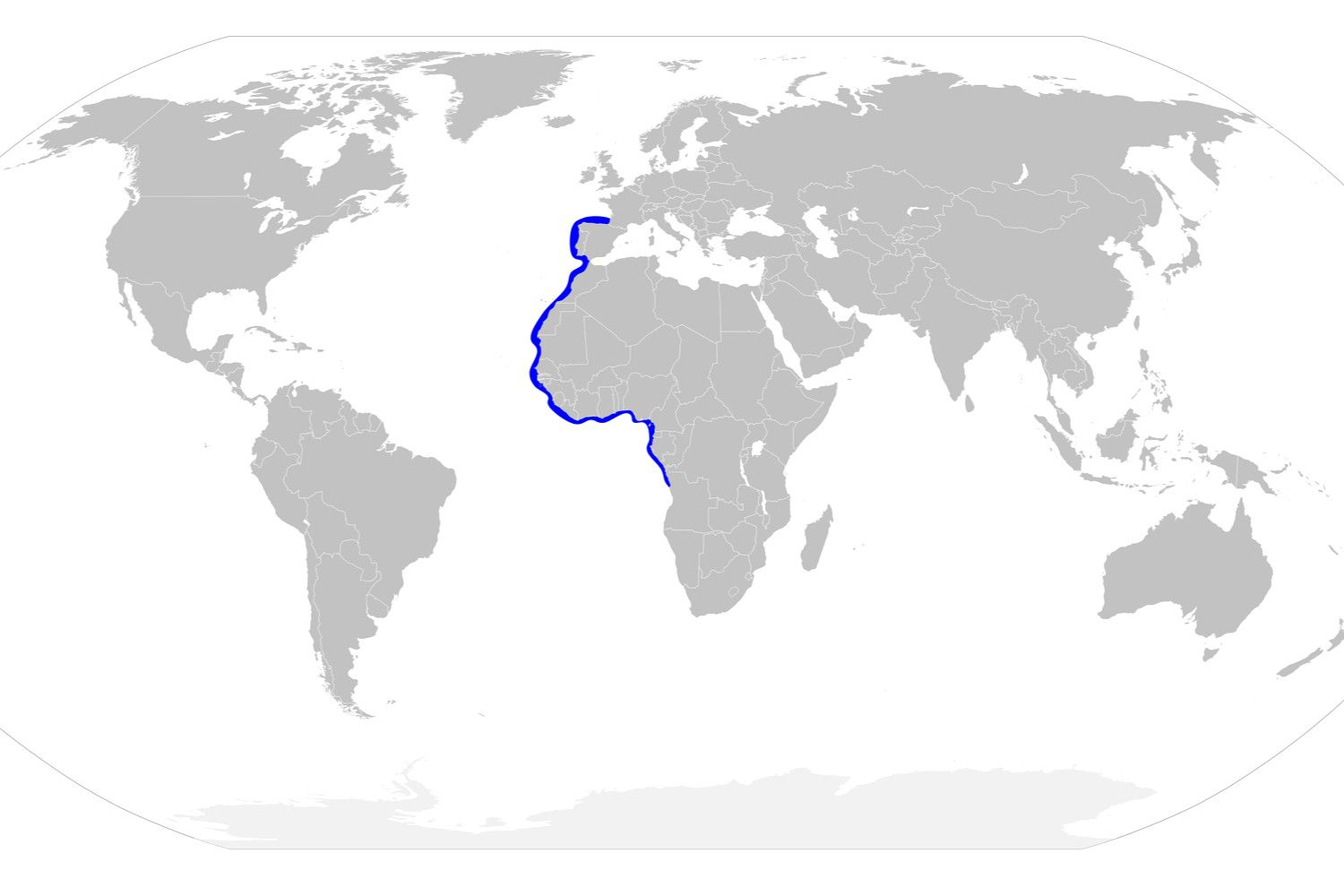 Distribution map for the whitefin hammerhead shark