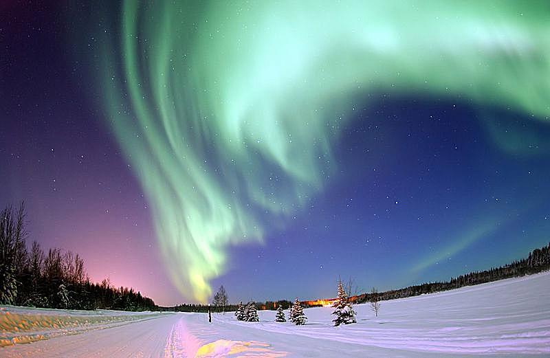 Aurora Borealis, or Northern Lights, above Bear Lake, Eielson Air Force Base, Alaska.