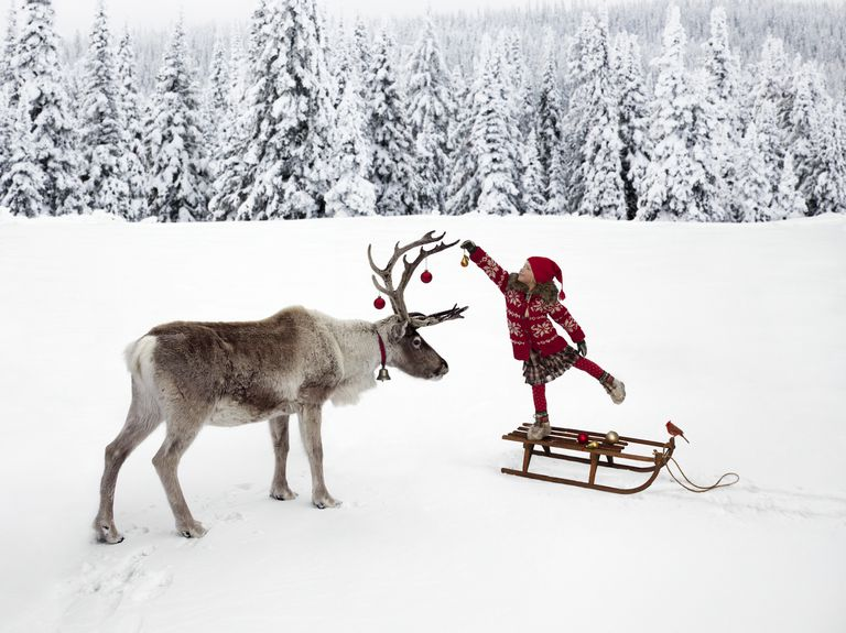 Girl Hanging Ornament on Reindeer