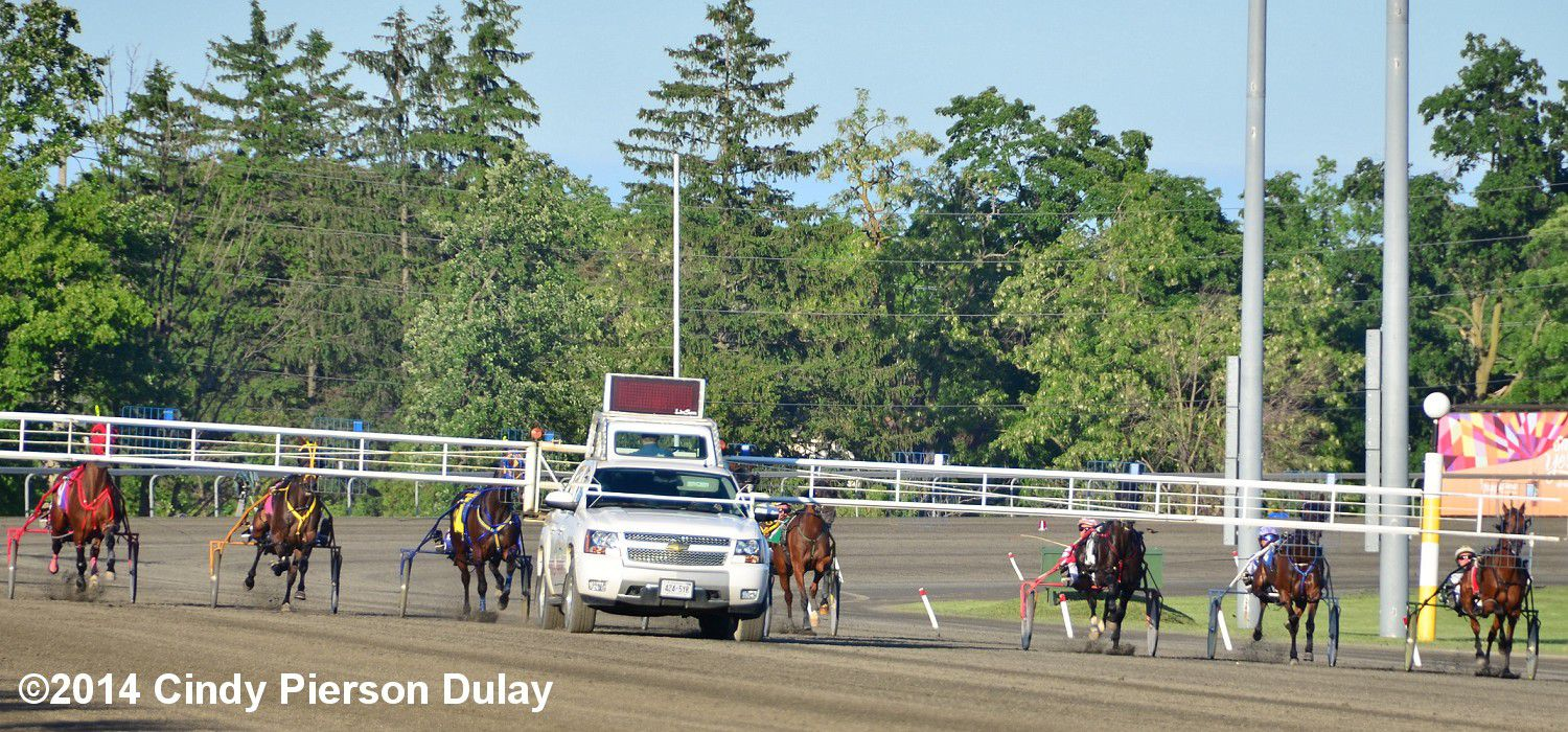 Sources For Harness Racing Entries And Results