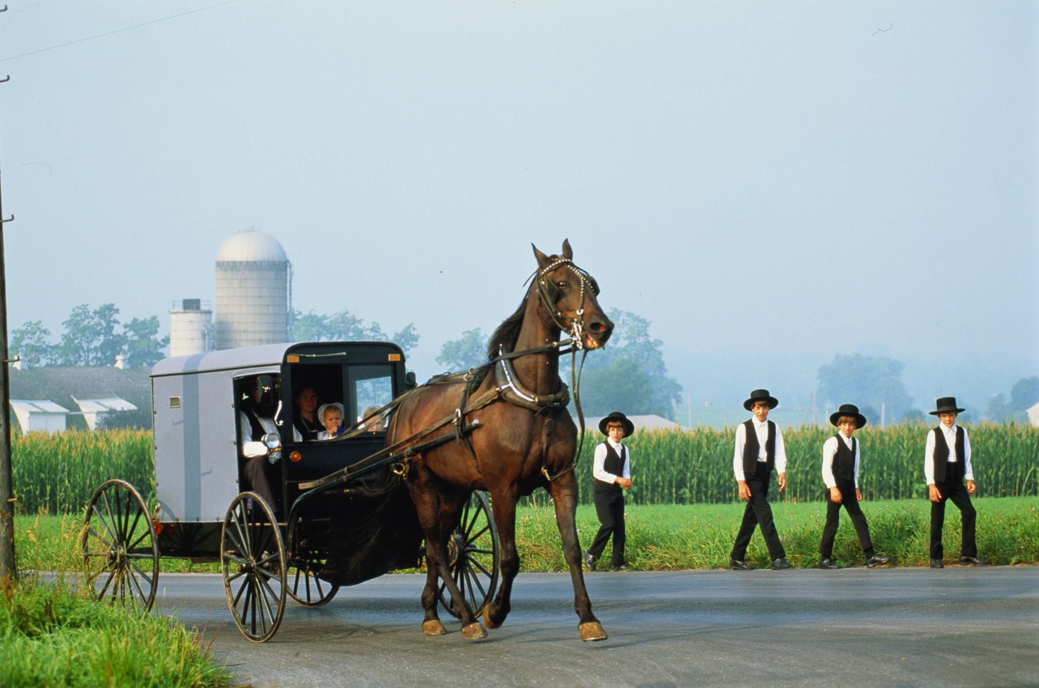 a research on the culture and religious beliefs of amish Lack of modern conveniences but about love, family, and faith  while  conducting research for amish youth culture, i noticed how healthy the.