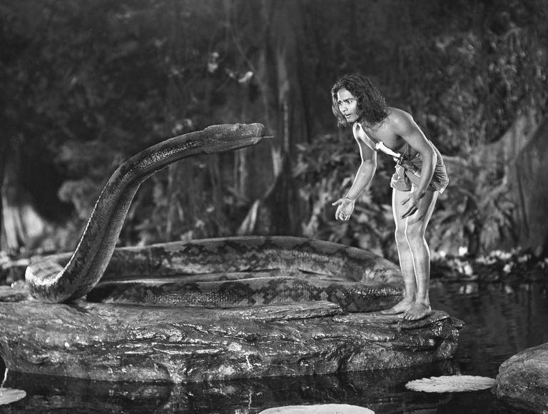 1942 film The Jungle Book