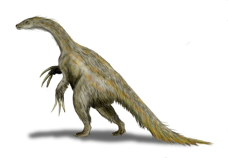 Illustration of a hairy <i>Nothronychus</i> with three long claws and a long bushy tail