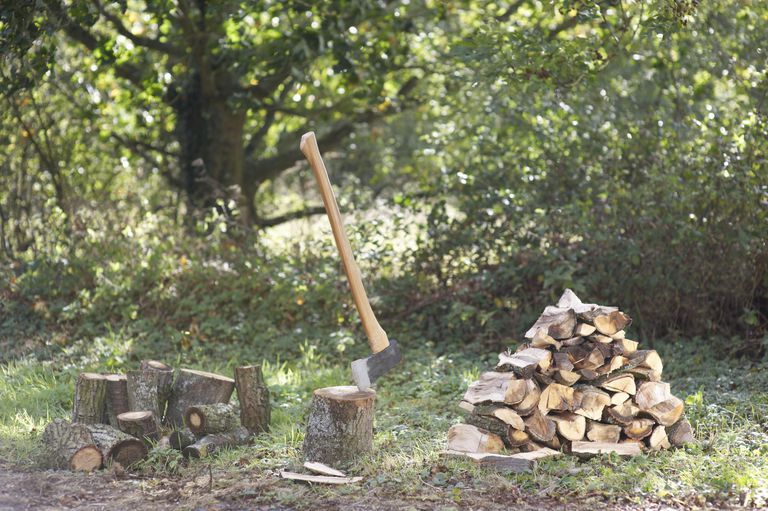 Chopped firewood and axe in countryside.