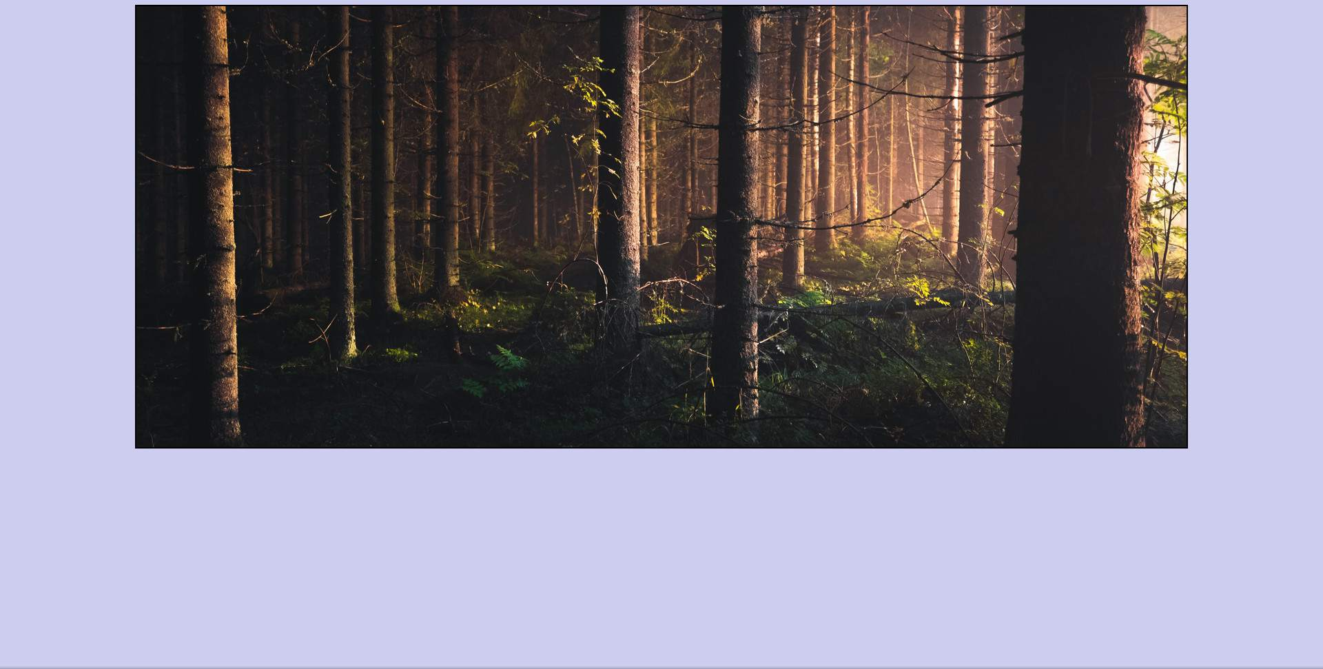 Use CSS20 to Stretch a Background Image to Fit a Web Page
