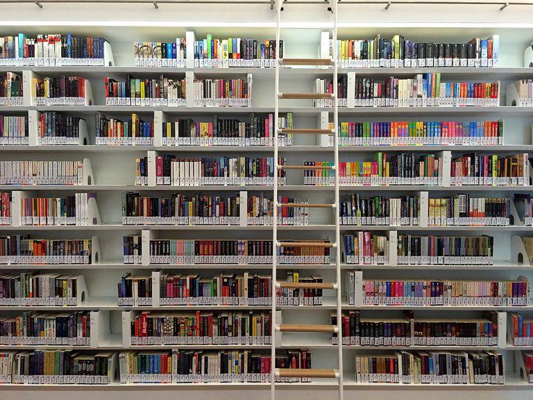 Ladder against library bookshelf