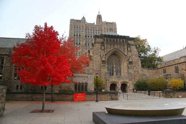 Ivy League Schools Acceptance Rates Location More