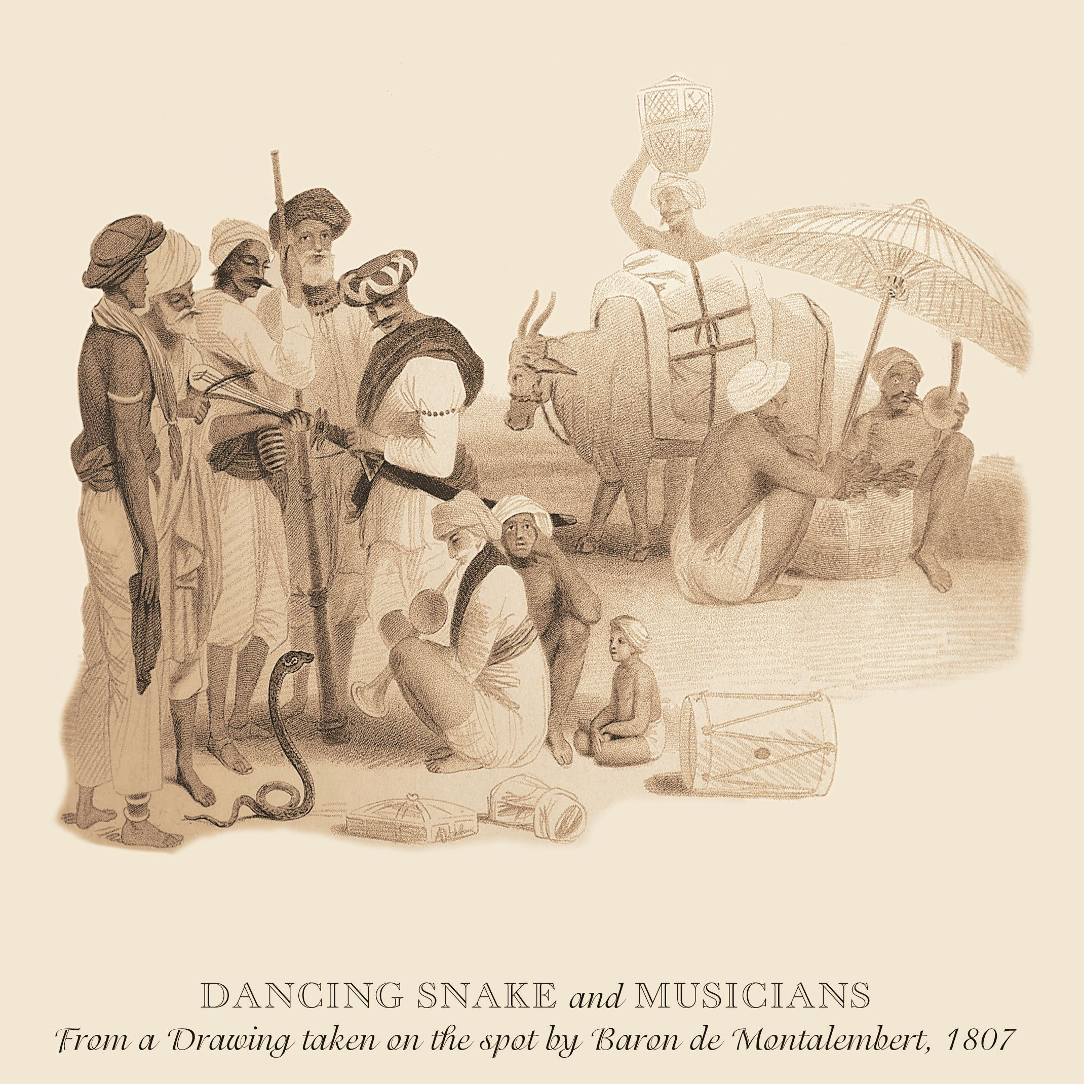 Exotic musicians and a performing snake