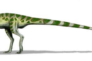 Digital illistration of leaellynasaura dinosaur.