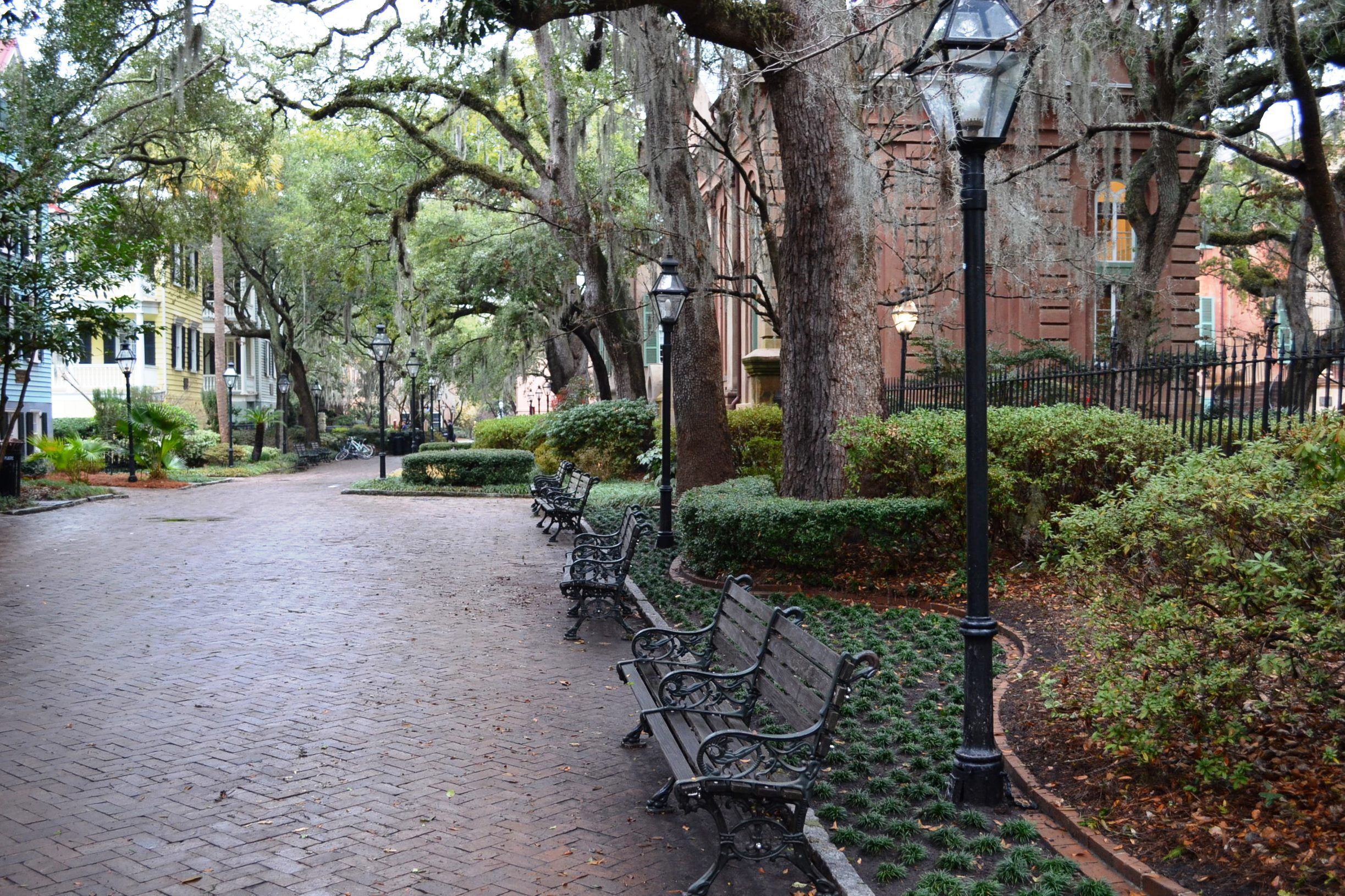 college of charleston admission  sat scores  admit rate