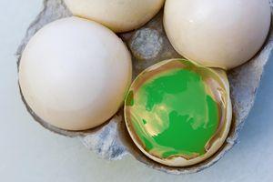 Eggs in a carton with a green yolk