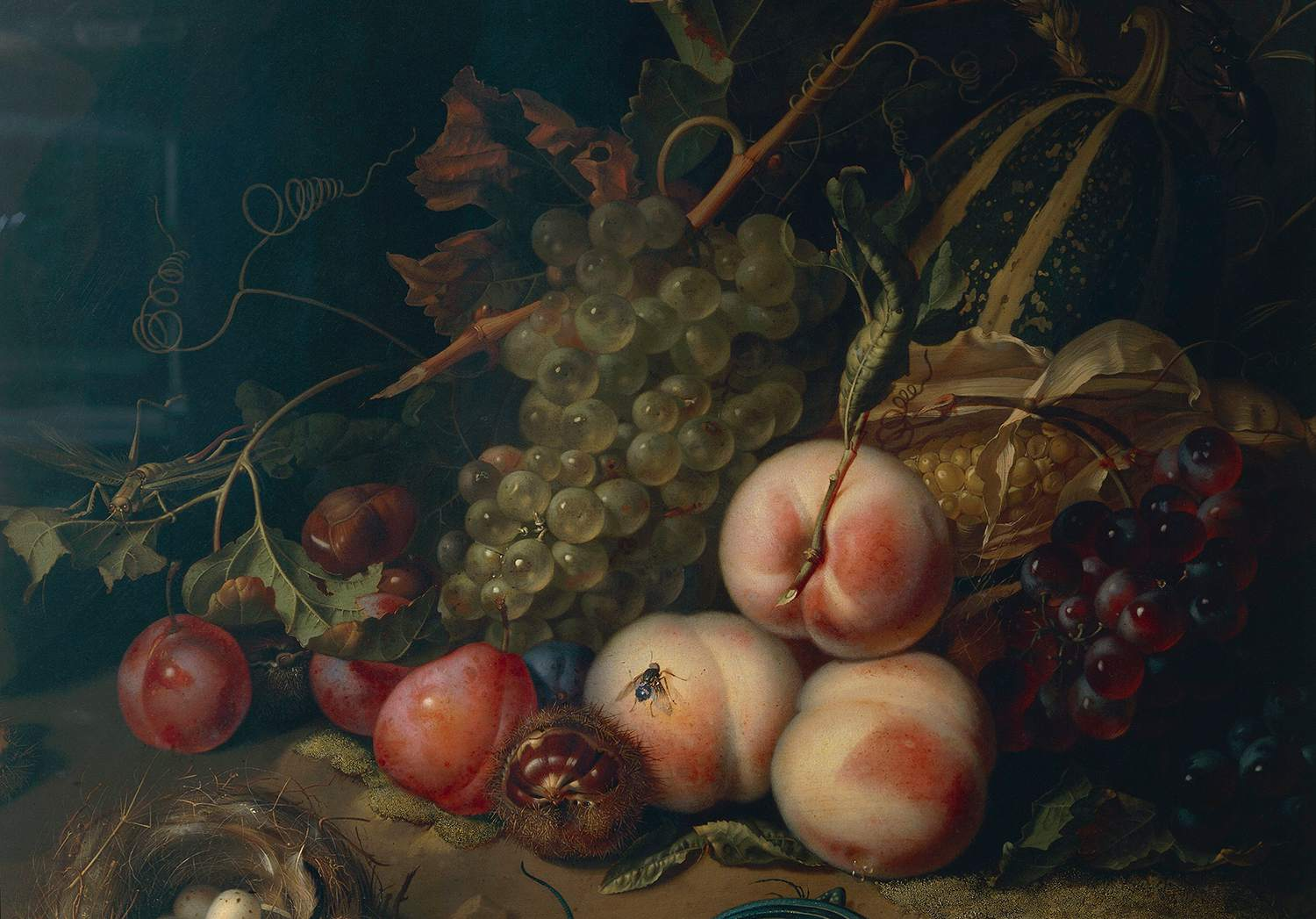 Comp Save to Board Italy, Florence, Still life with fruit and insects by Rachel Ruysch, 1711, oil on canvas, detail