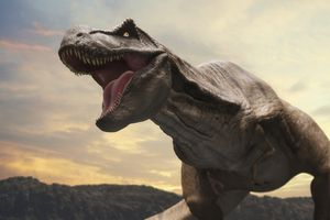 <i>T. rex</i> was one of the smarter dinosaurs in existence