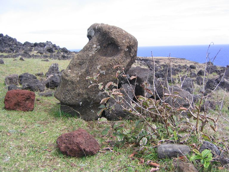 Moai Head in Rubble, Easter Island