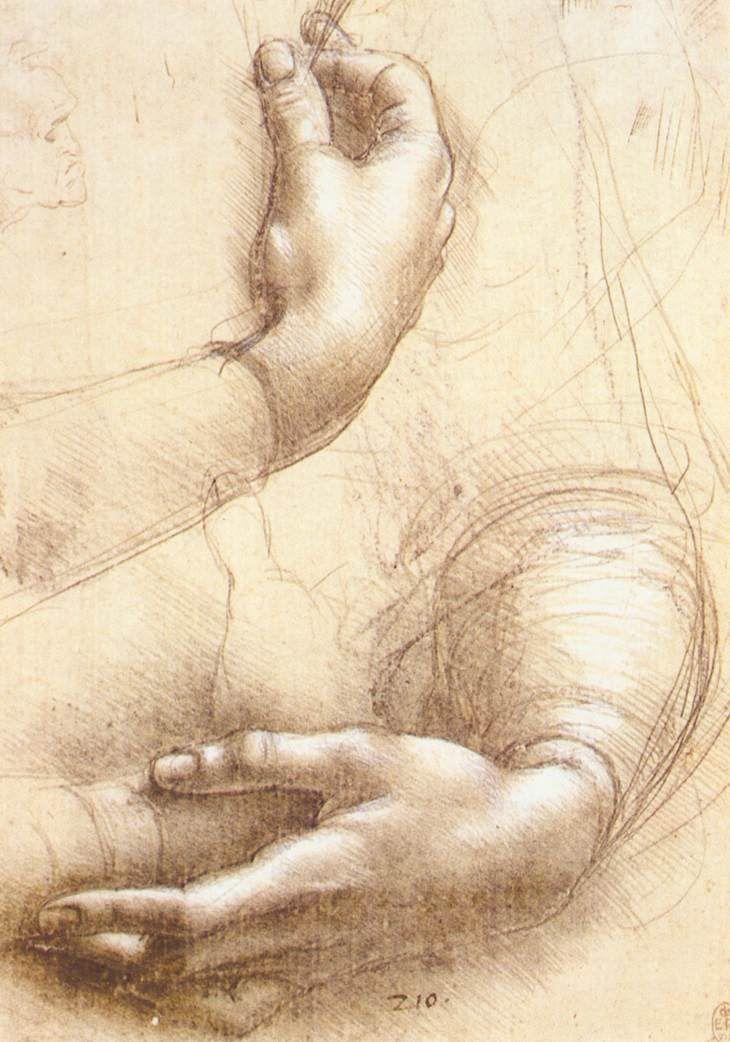 Leonardo Da Vincis Study Of Hands