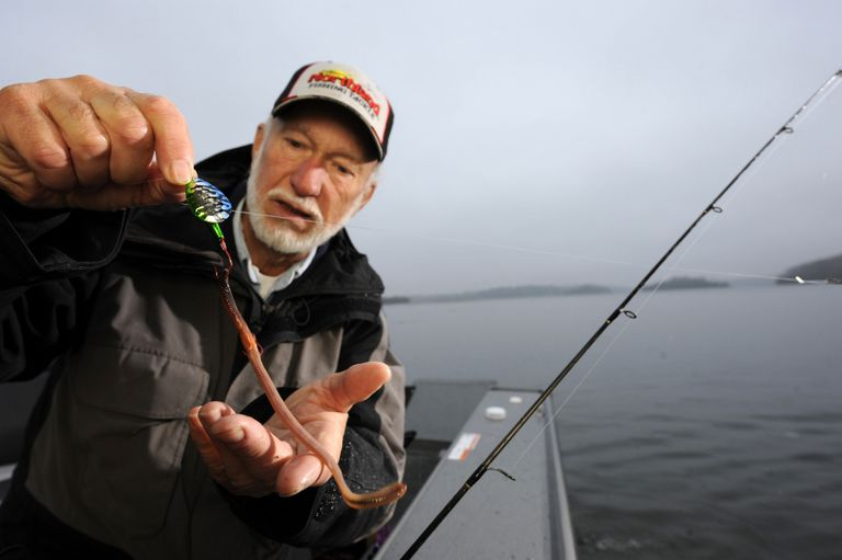 Gary Roach uses full-bodied, healthy nightcrawlers for fishing.