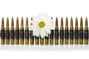Ammunition Belt - Daisy