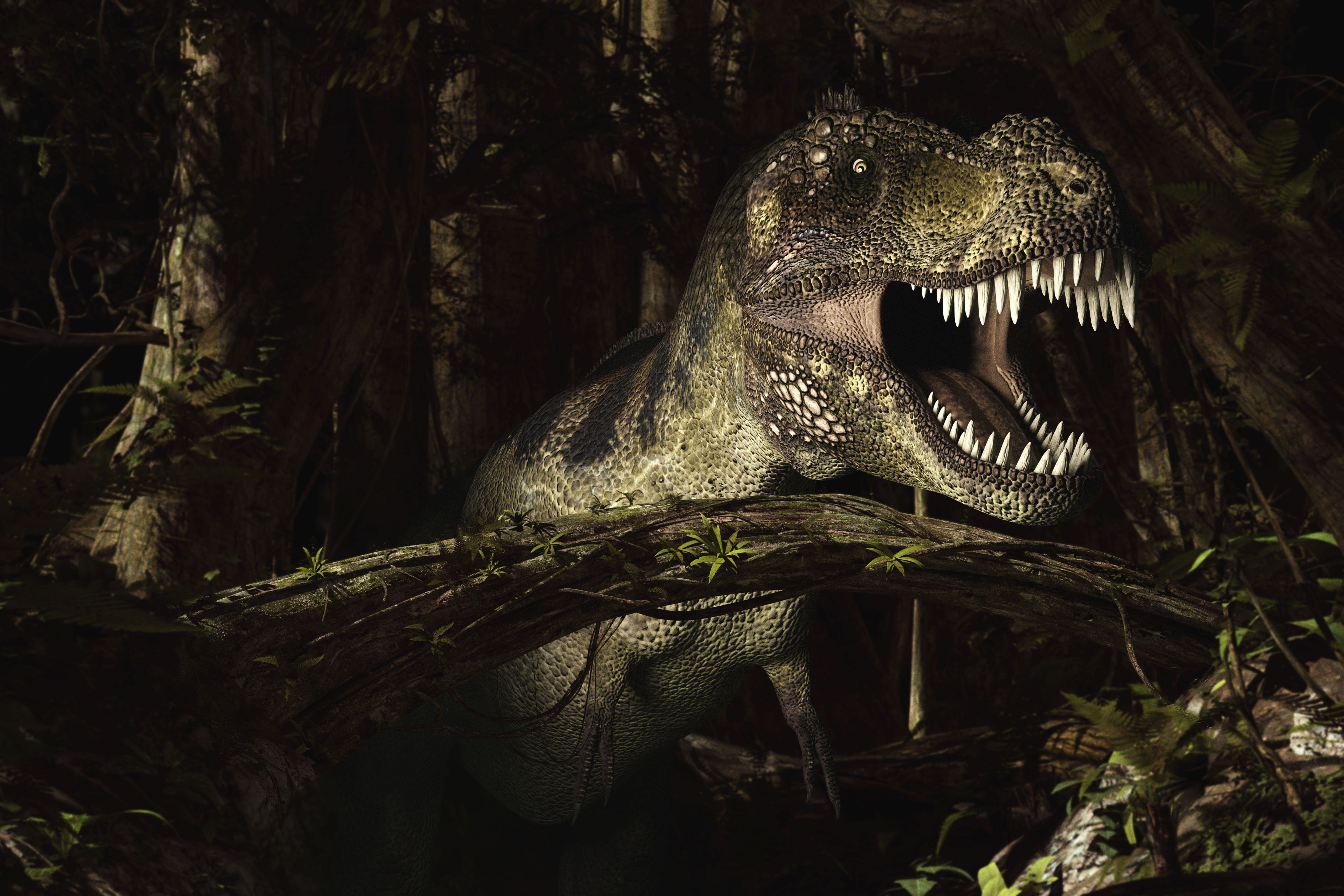 10 facts about tyrannosaurus rex king of the dinosaurs