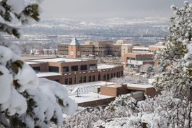 A view of several brick buildings on campus, with snowy trees in the foreground