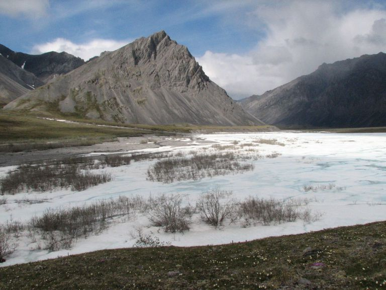 Frozen Spring in Tundra, Arctic National Wildlife Refuge