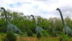 Brachiosaurus exhibit outside showing dinosaurs walking among the trees.