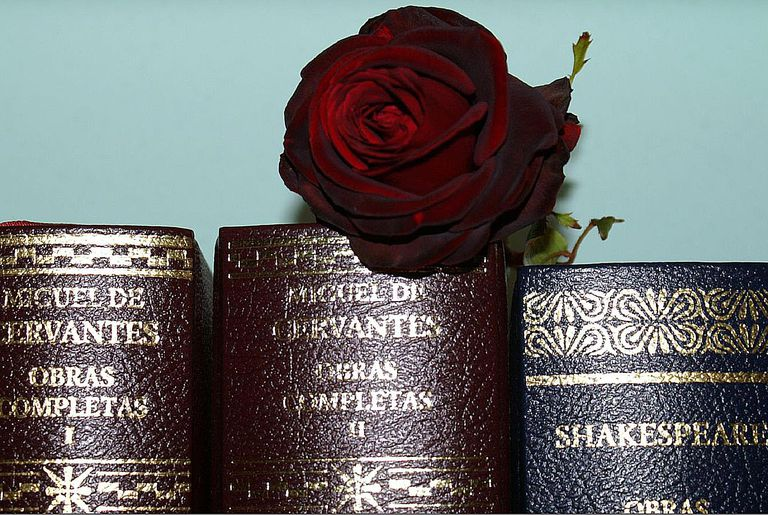 Works of Cervantes and Shakespeare share a bookshelf.