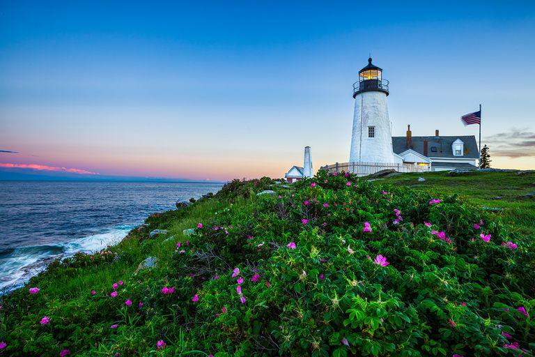 Pemaquid Lighthouse with Pink Roses
