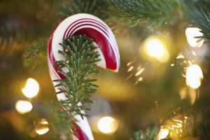 close up of candy cane on a Christmas tree