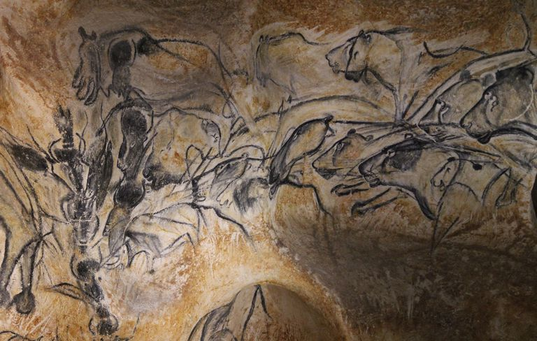 Close up paintings of animals in Chauvet Cave