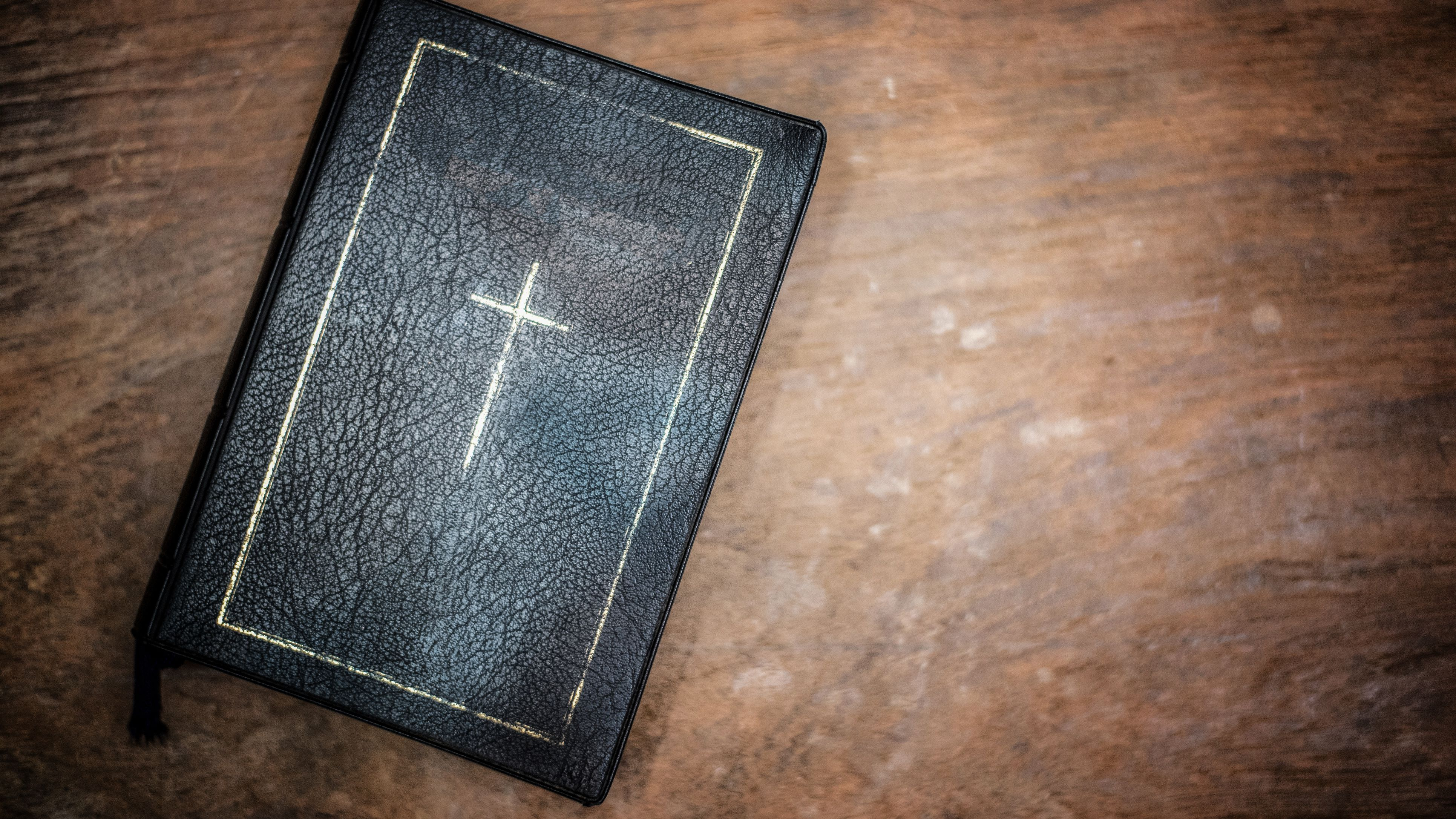 The 10 Best Study Bibles of 2019