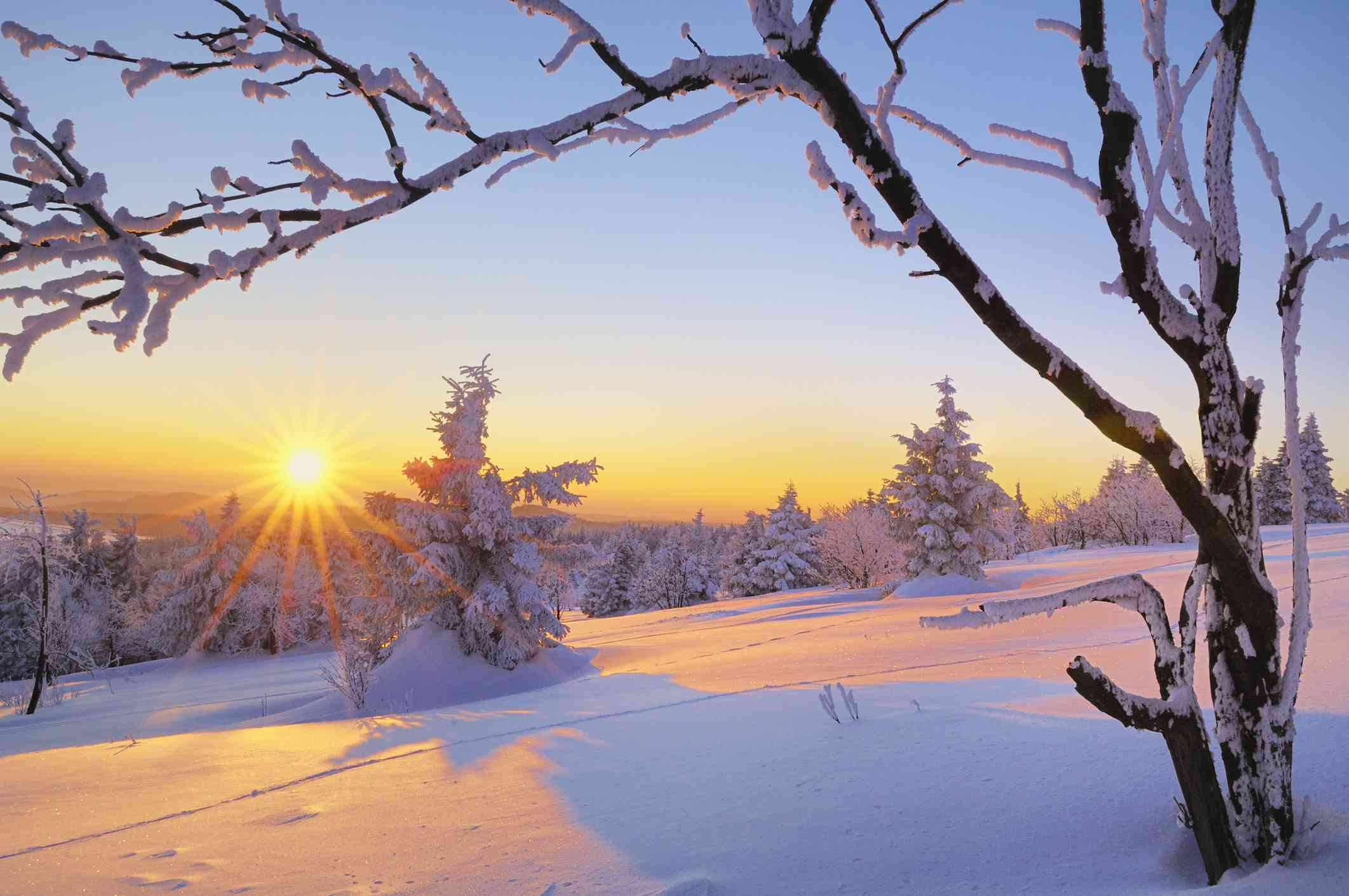 describe the setting and its significance in winter dreams