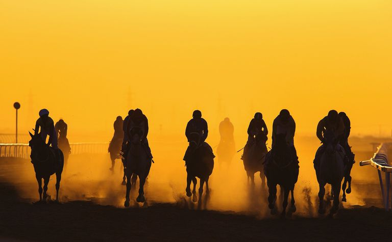 Horse Racing Against Clear Orange Sky