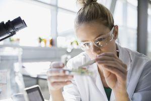 Focused scientist using tweezers in a petri dish