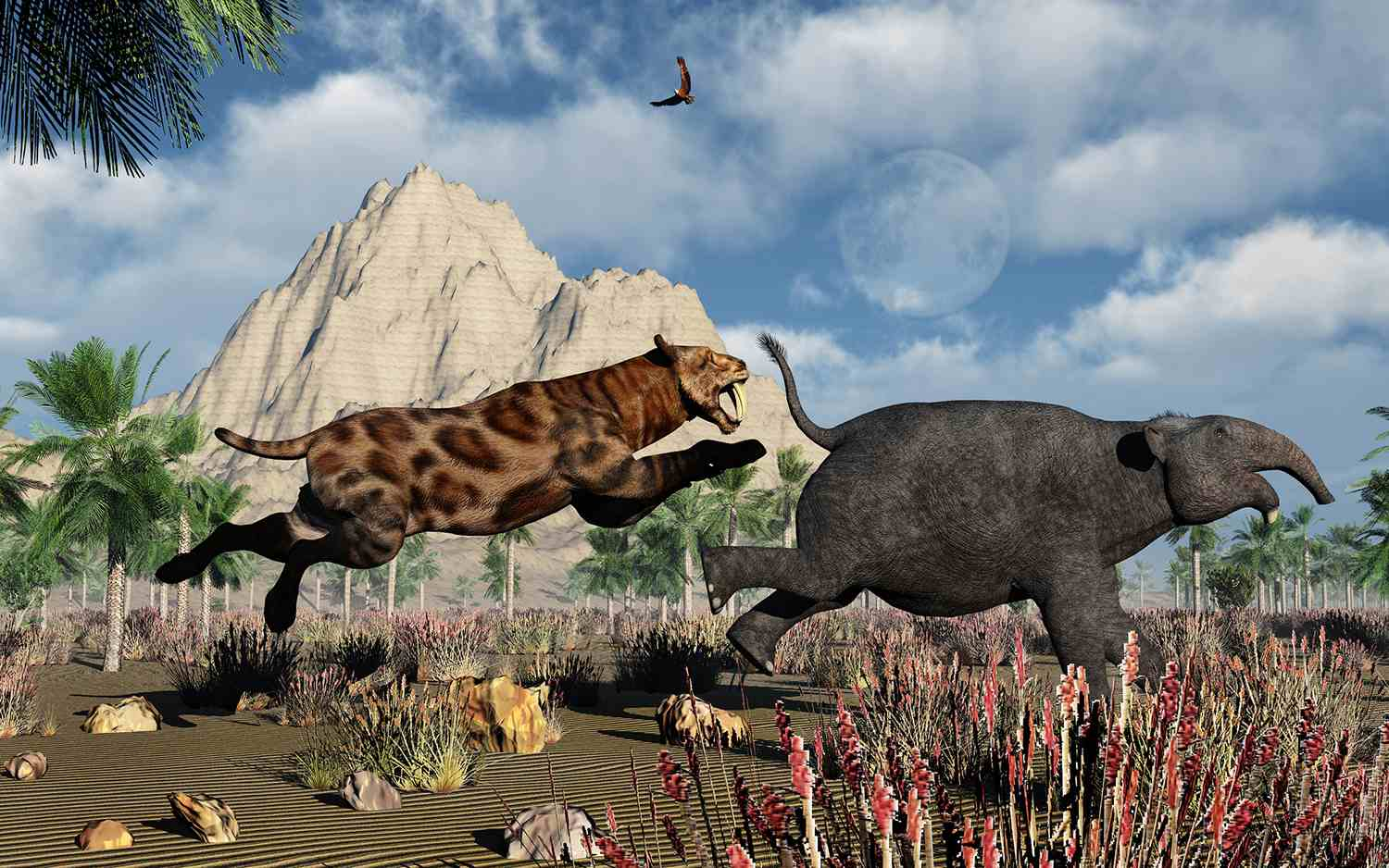 A Carnivorous Sabre-Tooth Tiger Attacking a Young Deinotherium