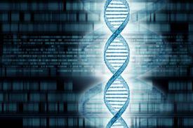 Genetics research, conceptual artwork showing a string of DNA
