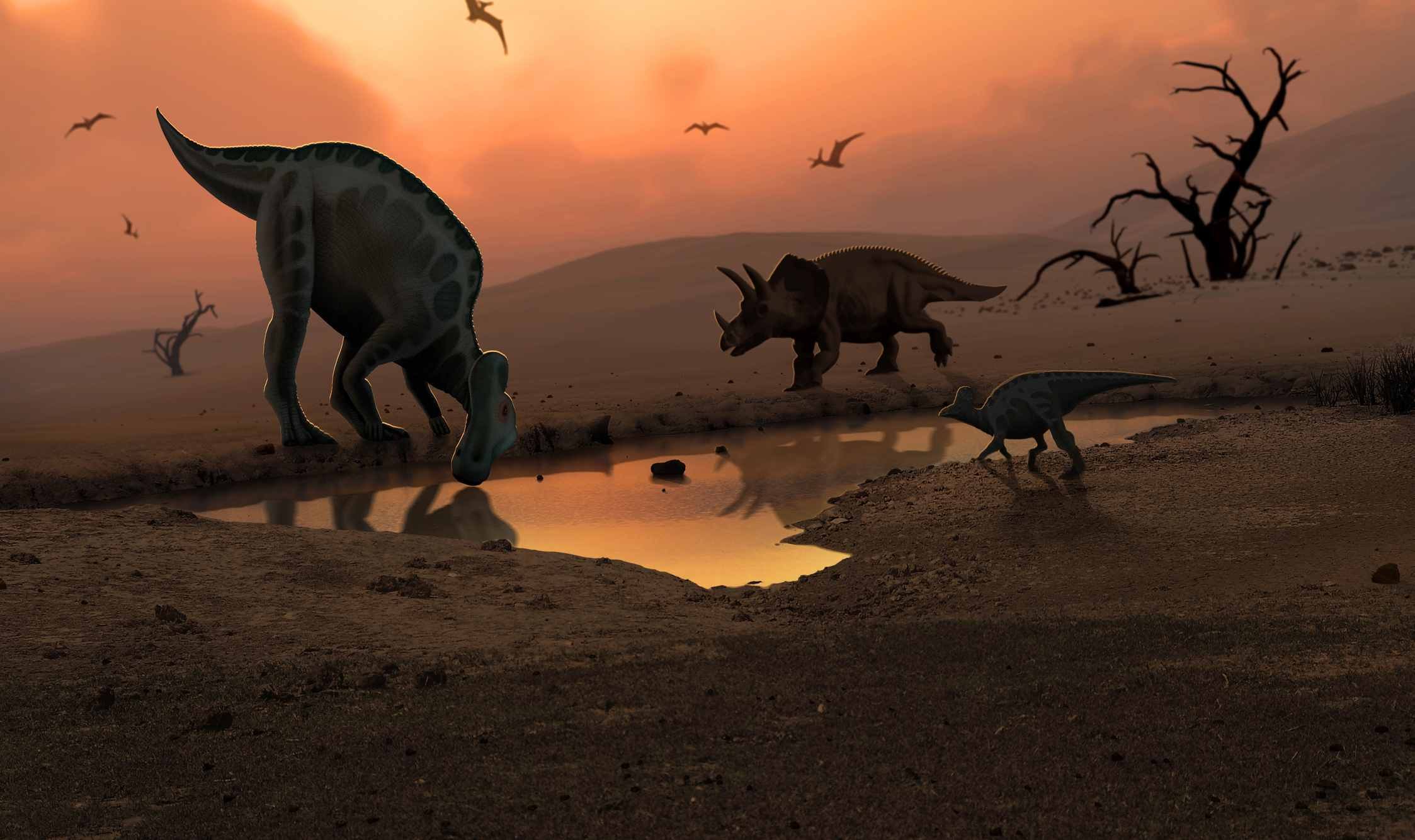 Illustration of Triceratops and other creatures at a watering hole at sunset